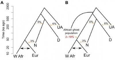 В ДНК населения западной Африки обнаружен геном чужих