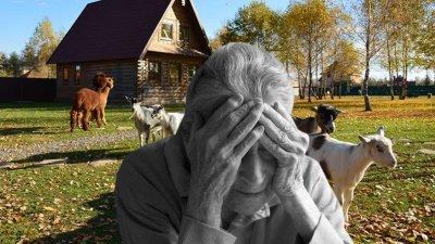 Ювенальная юстиция: отобрали внучку за поход на ферму