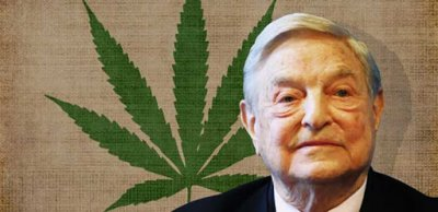 Для чего фонд Сороса легализирует марихуану