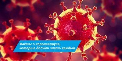 """Взгляд на реальные факты о """"пандемии covid-19"""""""