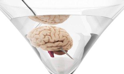 Изменение в мозге, если пить алкоголь