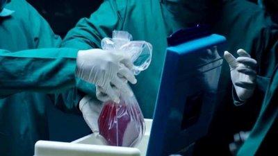 Смерть мозга - не основание для изъятия органов