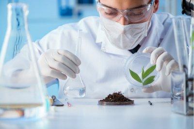 Зачем проводить испытание почвы?