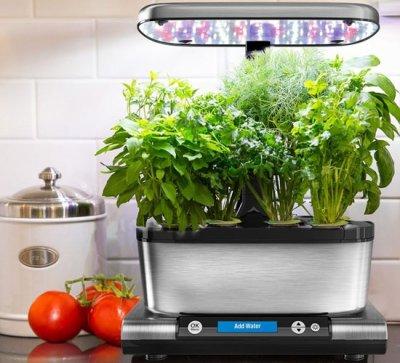 Выращивание растений в квартире: виды и преимущества гроубоксов