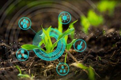 Цифровые технологии на службе у земледельцев