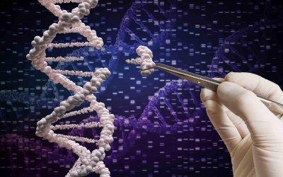Технология изменения генов CRISPR-Cas9 непредсказуема