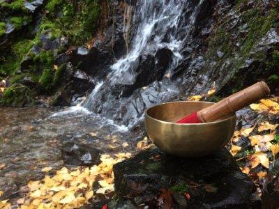 Тибетские поющие чаши: применение и полезные свойства