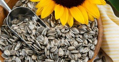 6 причин для выращивания подсолнечника