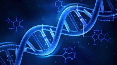 Аналитический взгляд на законопроект о геномной регистрации граждан РФ