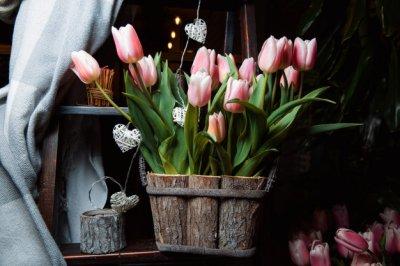 Изящное дополнение к подарку - композиция из тюльпанов
