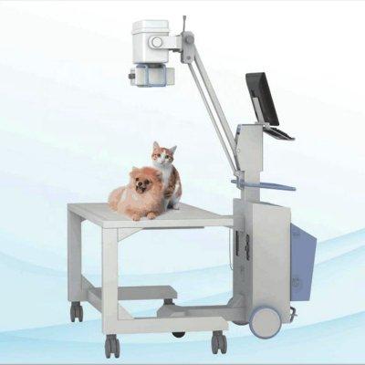 Современное оборудование для ветеринарных клиник