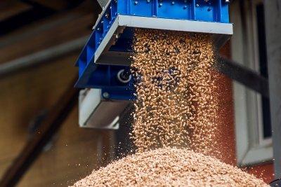 Современные технологии обработки зерна