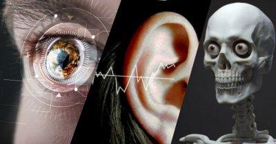 10 необычных способностей организма человека