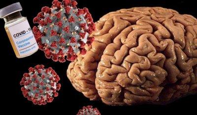Аномальная активность мозга после covid-19