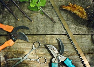 Инструменты для обрезания деревьев и кустов