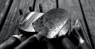 8 первостепенных инструментов для садовода-новичка