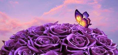 Розовый букет: выражение чувств с помощью цвета