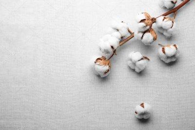 Коттоновая ткань: основные характеристики и уход