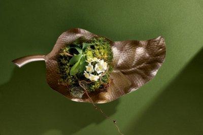 7 секретов для начинающего флориста