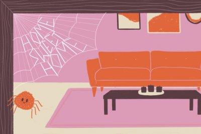 Профилактика возникновения вредителей в доме: 4 совета