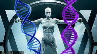 ВОЗ издал рекомендации по изменению человеческого генома