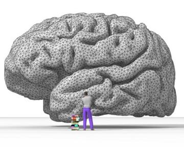 Грамотность изменяет структуру мозга