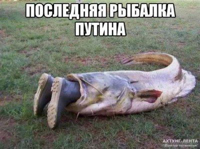 Договорной Матч Фото