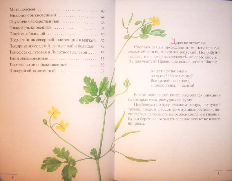 здоровье под знаком зодиака станислав мартынов
