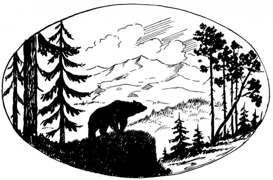 Красивые картинки для выжигания по дереву природы россии