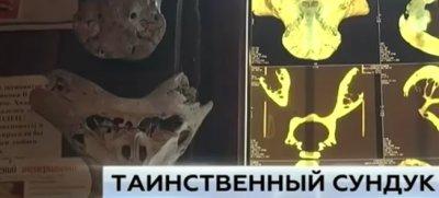 """Сенсационные находки в Адыгее """"инопланетные"""" черепа и сундук с символикой СС"""