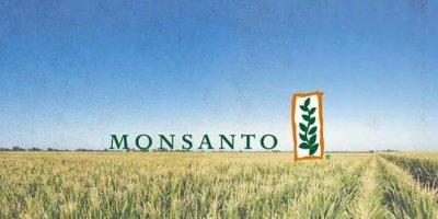ГМО-Корпорация Монсанто открывает первый завод в РФ