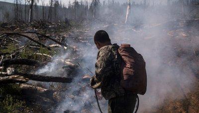 30 новых лесных пожаров вспыхнуло на Дальнем Востоке