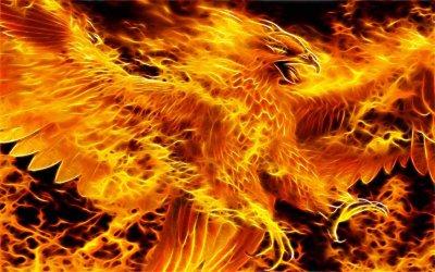 Братство Сварога: Новолетие Огненного Феникса