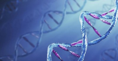 Как наши мысли способны изменять молекулярные связи в генах