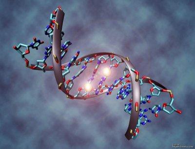 Молекула ДНК может исцелится при помощи чувств человека