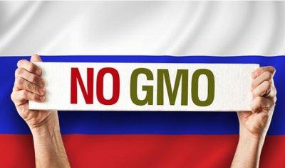 Россия запретила импорт ГМО продуктов