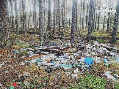 Как население севера России на мусор разводили