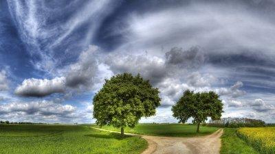 Что нам мешает найти Свой Путь?  Особенно в плане деятельности, призвания