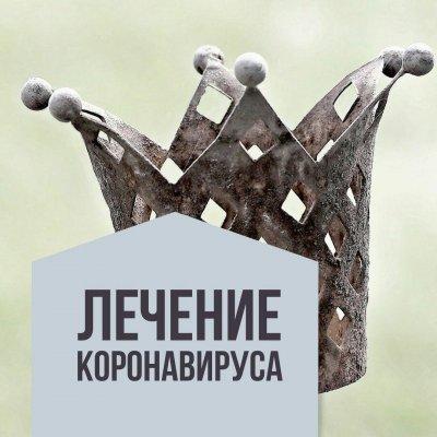 Дмитрий Раевский. Лечение Коронавируса бесплатно!