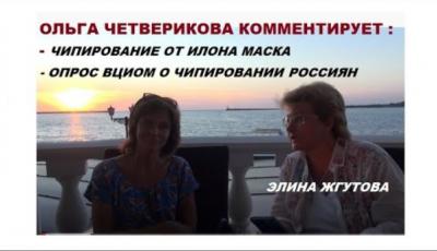 Чипизация от Илона Маска и опрос ВЦИОМ о чипизации в России