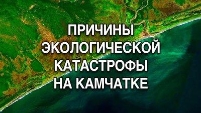 Кто виновен в экологической катастрофе на Камчатке?