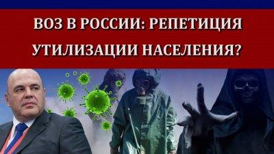 ВОЗ в России: репетиция утилизации населения?