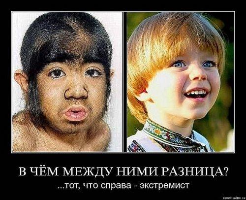 smotret-zhena-delaet-minet-russkoe